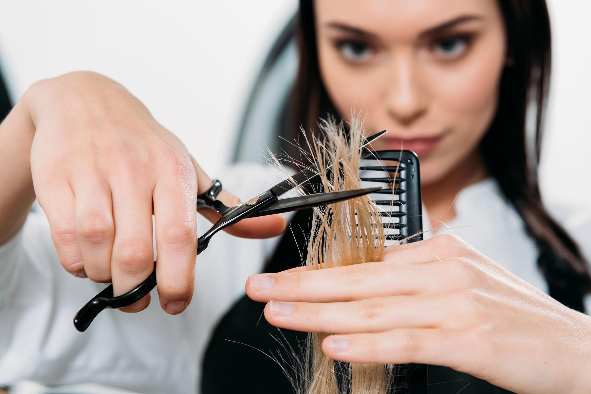 курс обучения на парикмахера